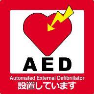 AED極小
